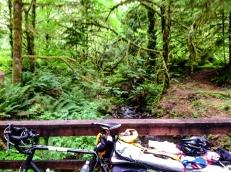 June Creek