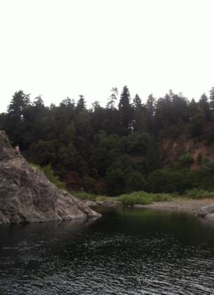 Humboldt Redwood Forest